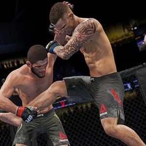 UFC 4 Profesional