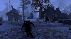 elder-scrolls-online-stealth-combat-screenshot