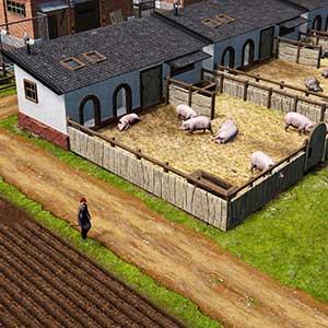 Farm Manager 2021 - Explotación de cerdos