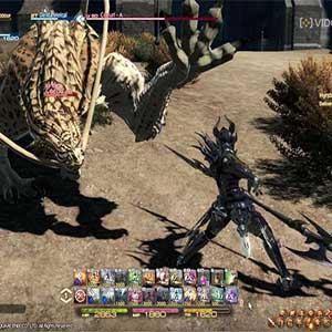 Final Fantasy 14 A Realm Reborn - Fight