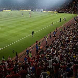 Increíble, auténticos Stadium