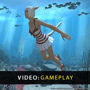FINAL FANTASY 14 Online Gameplay Video