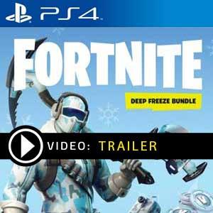 Fortnite Deep Freeze Bundle PS4 Precios Digitales o Edición Física