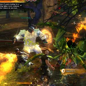 GUILD WARS 2 Fighting Monsters