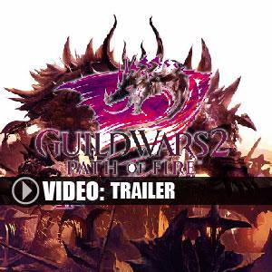 Comprar Guild Wars 2 Path of Fire CD Key Comparar Precios