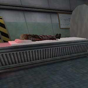 Half-Life Combat Medic