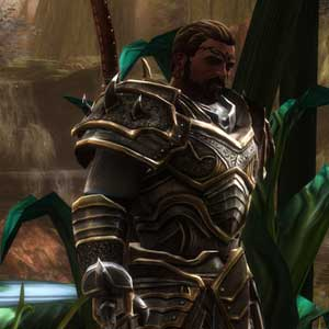 Kingdoms of Amalur Re-Reckoning remastered graphics