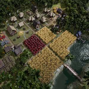 Kingdoms Reborn Bosque