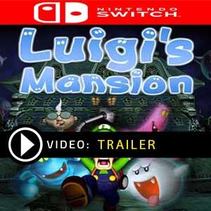 Comprar Luigi