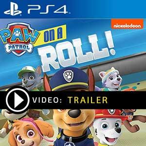 Paw Patrol On A Roll PS4 Precios Digitales o Edición Física