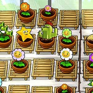 Haga crecer su propio jardín Zen