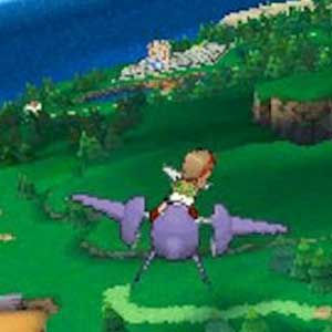 Pokemon Omega Ruby Nintendo 3DS Aerial View