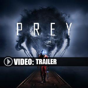 Comprar Prey 2017 CD Key Comparar Precios