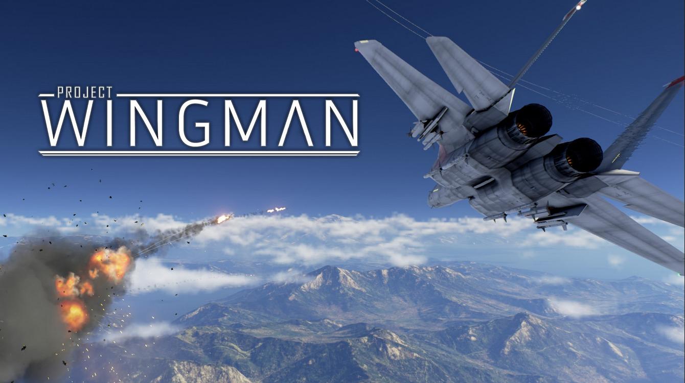 comparar las mejores ofertas de project wingman