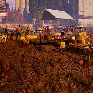Comunidad de sobrevivientes