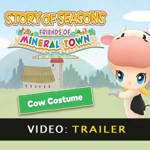 Comprar Story of Seasons Friends of Mineral Town CD Key Comparar Precios