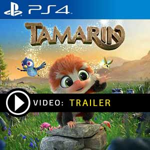 Comprar Tamarin PS4 Barato Comparar Precios
