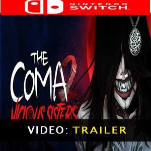 Comprar The Coma 2 Vicious Sisters Nintendo Switch Barato comparar precios