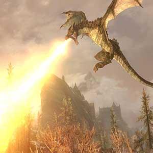 battling ancient dragons