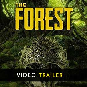 Comprar The Forest CD Key Comparar Precios