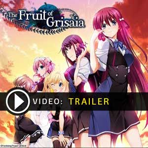 Comprar The Fruit of Grisaia CD Key Comparar Precios