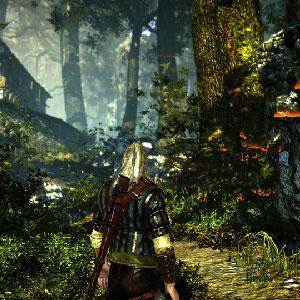 The Witcher 2 Assassins of Kings Screenshot