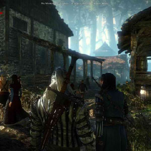 The Witcher 2 Assassins of Kings Woody Corridor