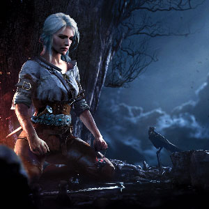 The Witcher 3 Wild Hunt Juego