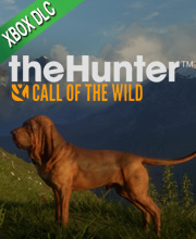 theHunter Call of the Wild Bloodhound