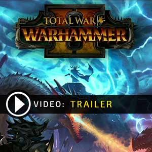 Comprar Total War Warhammer 2 CD Key Comparar Precios