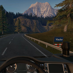 Truck Driver - Carretera