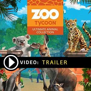 Comprar Zoo Tycoon Ultimate Animal Collection CD Key Comparar Precios